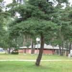 camping municipal d'Aumont-Aubrac